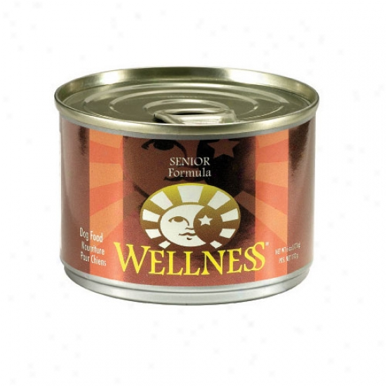 Wellness Senior Recipe 6oz Case Of 24 Cnas