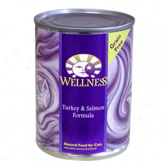 Wellness Turkey And Salmon Recipe 12.5oz Case Of 12 Cans
