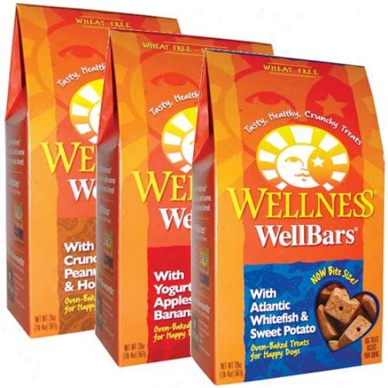 Wellness Wellbars Chicken And Cheddar 20oz