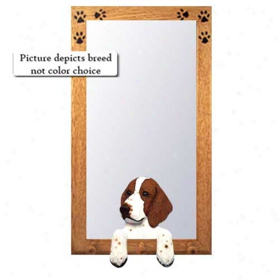 Welsh Springer Spaniel Hall Mirror With Oak Golden Frame