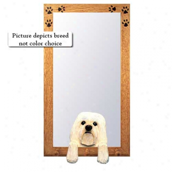 White Havanese Hall Mirror With Basswood Walnut Frame
