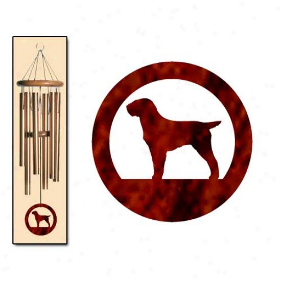Wirehaired Pointing Griffon Wind Chiems Medium Bronze