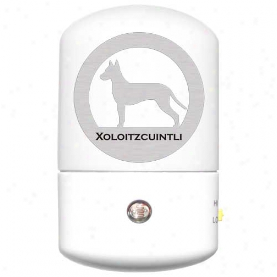 Xoloitzcuintli Led Night Light