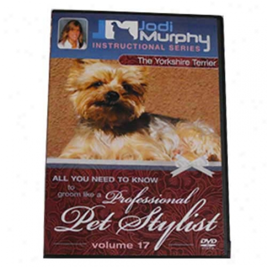 Yorkshire Terrier Grooming Dvd By Jodi Murphy