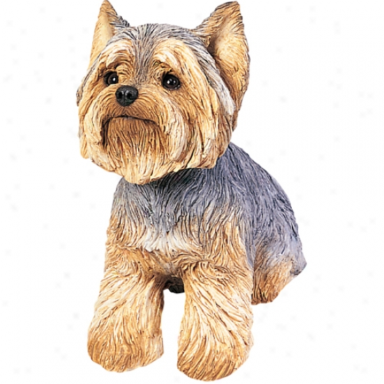 Yorkshire Terrier (puppy Clip) Original Size Sandicast Sculpture