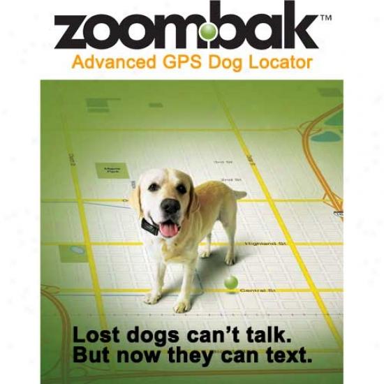 Zoombak Gps Dog Locator