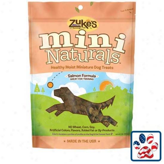 Zukes Mini Naturals Dog Treats Salmon 1lb